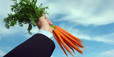Carrots-400x200