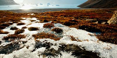 permafrost-400x200